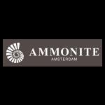 Ammonite300x300